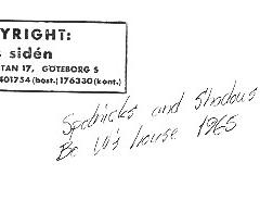 1965 Spotnicks13